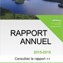 B5 rapport annuel